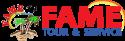 Fame Tour